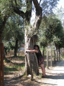 LIZZIE HUGGING MONSTER OLIVE TREE